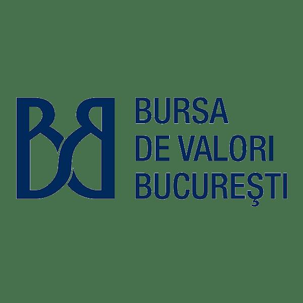 logo bvb 1